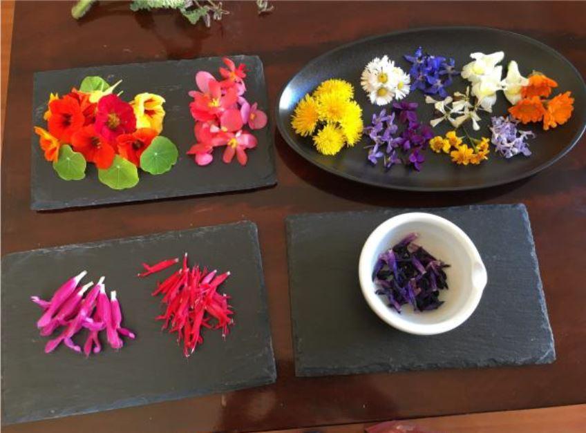 Photo des fleurs présentées